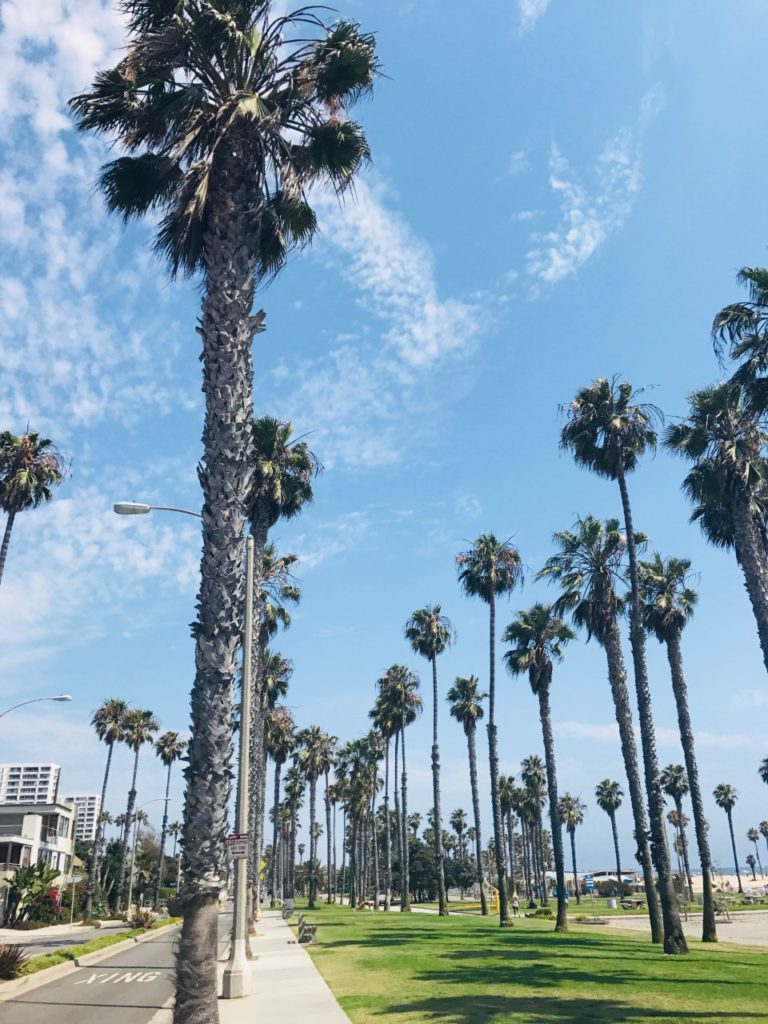 california – GONE OUT WEST
